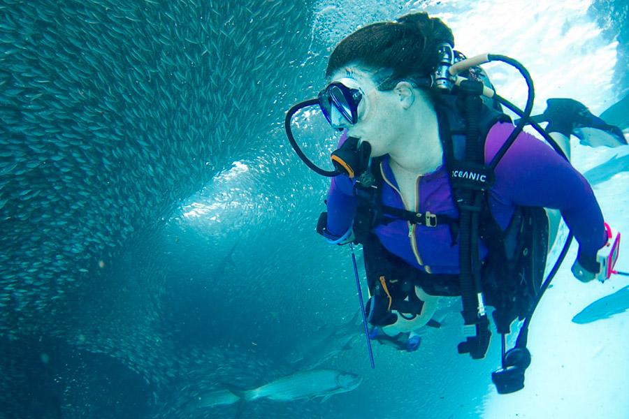 Bezz-Diving-1