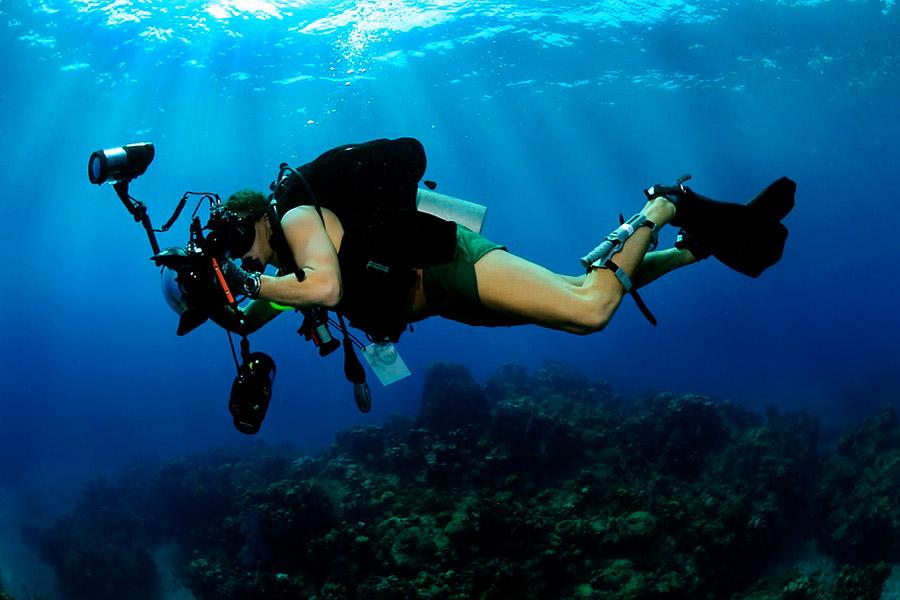 Black-Frog-Divers-1