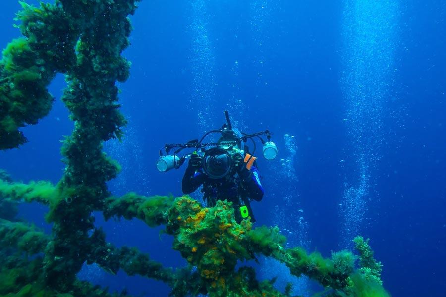 Pura-vida-Diving-1