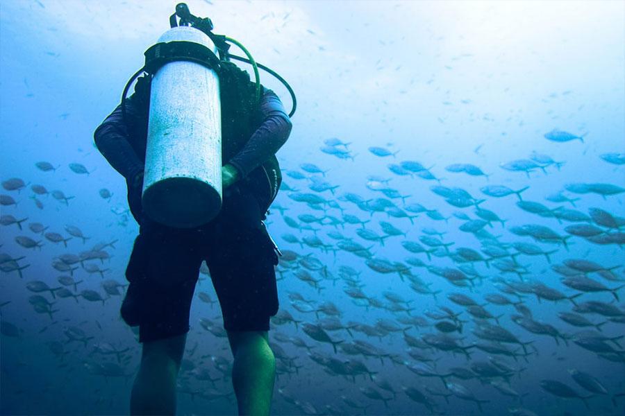 Pura-vida-Lanzarote-Diving-2