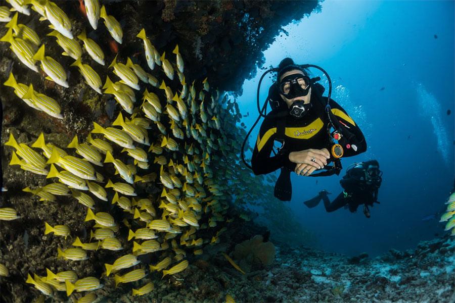 Yucatan-Dive-Altabrisa-2