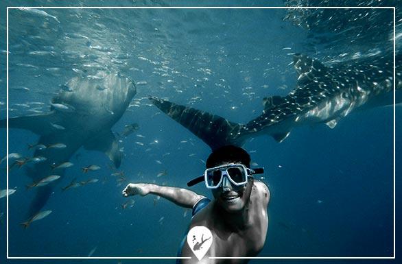 apnea-divers-go-diving