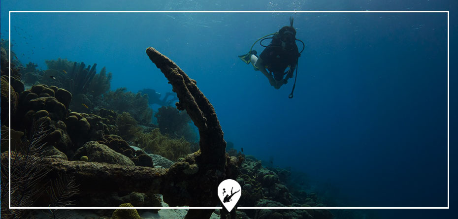 bautismo-buceo-divers-go-diving