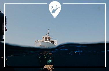 boyas-buceo-divers-go-diving