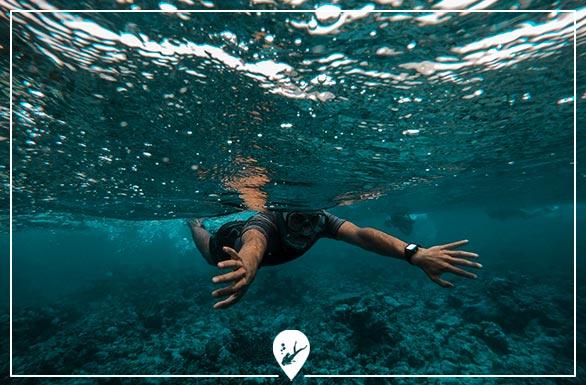 buceo-recreativo-divers-go-diving