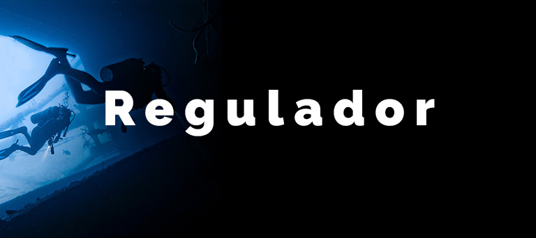 el-regulador