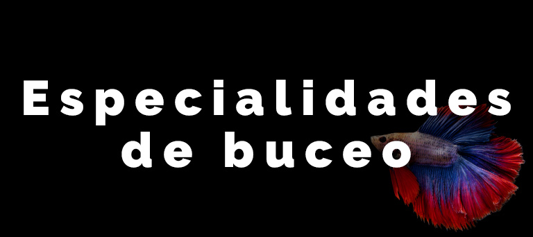 especialidades-de-buceo
