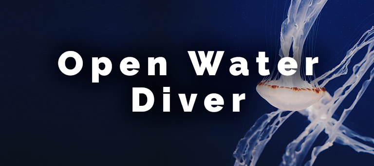 open-water-diver-mobile