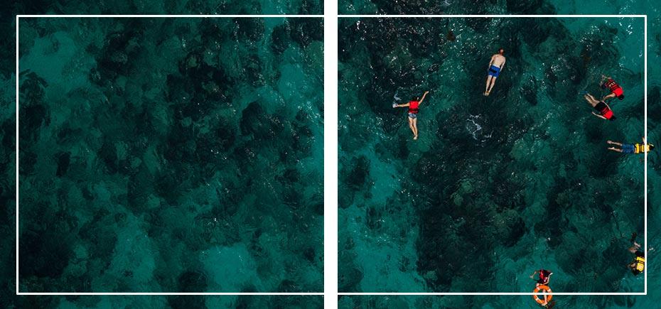 ssi-informacion-divers-go-diving
