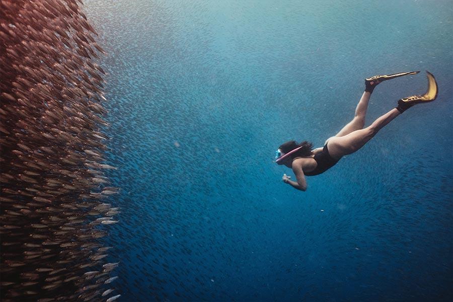 Maadi-Divers