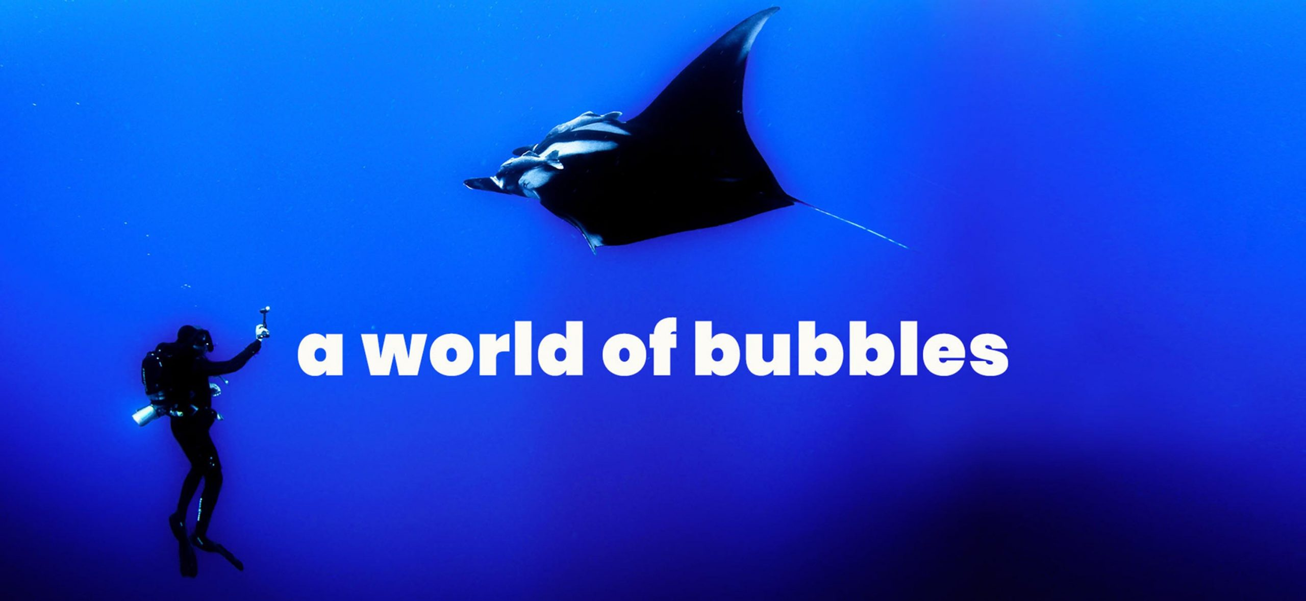 Divers-go-diving-buscador-de-escuelas-de-buceo-online